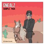 gnealz drum kit
